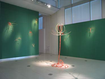 Cyber Flora installation view, The Real Ideal, Millennium Galleries.